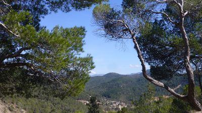 Photo for Charming little new Provencal house with private pool in quiet