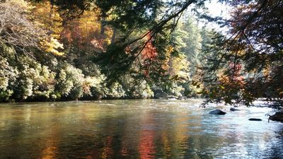 Enjoy the colorful River View from the banks of the Toccoa River at Picks Riverside Retreat