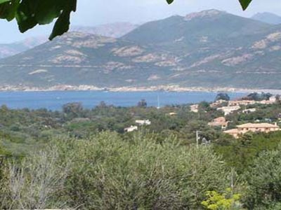 Photo for Apartment in stone house, sea view and maquis, comfortable, air conditioned