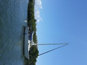 Photo for 25' bayliner sailboat in the water ry to go! If will help if u learn to sail it