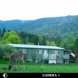 Photo for Blacktail Ridge Guest House, Wynndel B.C.