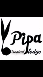 Photo for Pipa lodge 1 bungalow