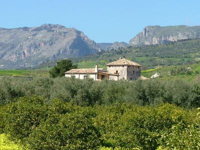 Photo for Holiday home on an estate, surrounded by citrus and olive trees, 7 km from the sea.