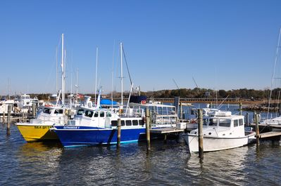 We have 2 amazing charter boats to take you wreck diving! Best on the East Coast