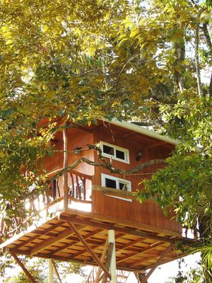 Photo for Treehouse with beautiful view to the Lagoon and the mountain