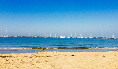 Great Family Escape to Cape Cod! Spend the summer relaxing on a private beach.