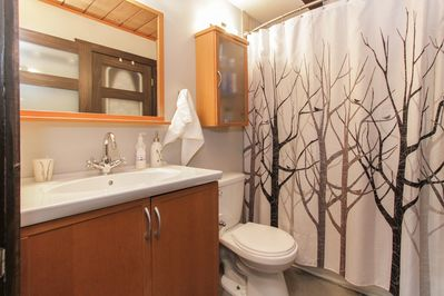 Downstairs bathroom has full size bathtub, washer, dryer, iron and ironing board