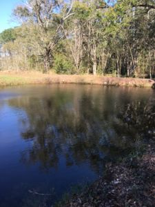 Photo for Country Setting with a Pond