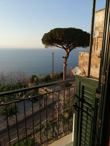 Photo for Relax in the Sorrento coast