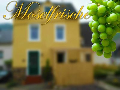 Photo for Right in the middle and close - cozy holiday home - Moselfrische