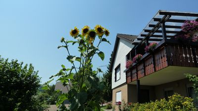 Photo for Apartment / app. for 2 guests with 35m² in Weilheim (116856)