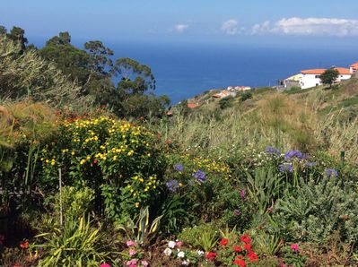 View from cottage garden