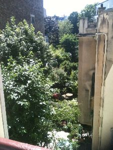 Summer. View on private gardens from the office.