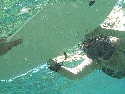 That's me - Aruba Bob has the best snorkeling tours - ask me about them