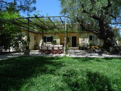 Photo for Beautiful Villa in a 11 acre olive grove