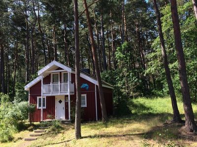 Photo for Cottage in the dune forest with sauna, whirlpool, Blu-ray player and Wi-Fi
