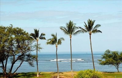 Photo for 180° Oceanfront View!! Completely Remodeled - Luxury Condo!