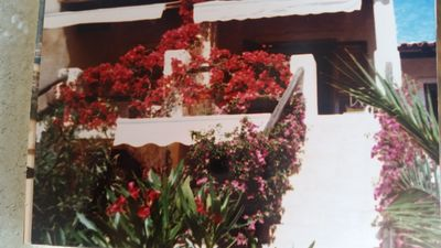 Photo for Sardinia apartment in terraced house with sea view 3 minutes from the beach,