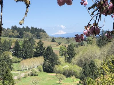 Photo for Willamette Valley Salem Oregon Luxury Home with Spectacular Views and Farm!