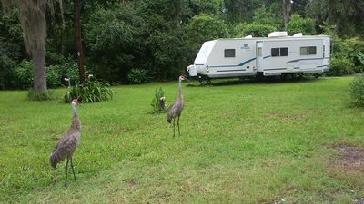 Photo for 1BR Recreational Vehicle Vacation Rental in Inverness, Florida