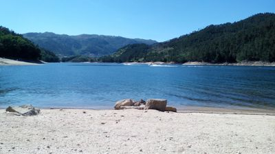 Photo for Corner of the cruise T3 near the river Cávado with excellent river beach in Gerês