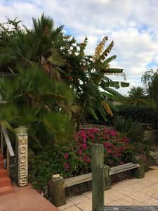 Photo for Canal Home, 2BR/2 BA/Heated Pool, Hot tub, Tiki Hut, Courtyard, Great Locale,