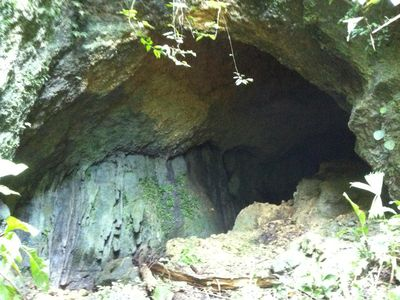 Photo for Big Cave!  Wildlife, great for birders, privacy, peace and quiet.