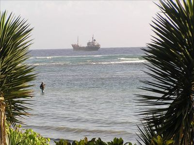View from our back yard. Watch the local fishermen