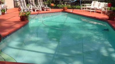 And then there is the lovely 10,000 gal  pool to bask in day or night