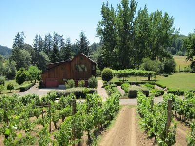 View of the home from the vineyard