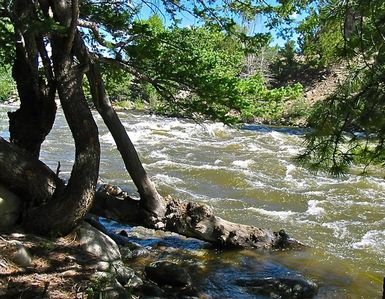 Private Arkansas River frontage on property. Listen to the river as you sleep.