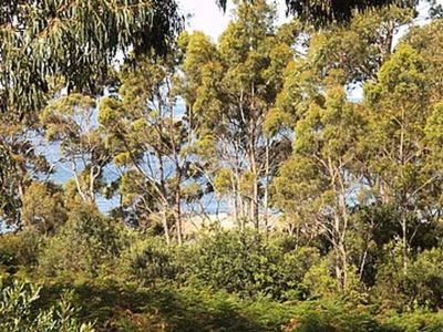 Photo for 4BR House Vacation Rental in Binalong Bay, TAS