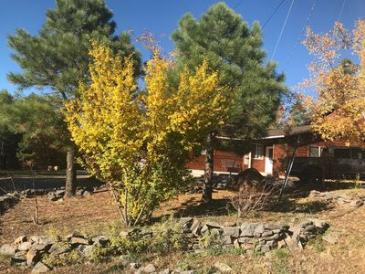 Photo for Spacious Cabin in the Pines