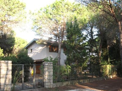Photo for Beautiful villa in a pine-wood 150 m from a white sandy beach
