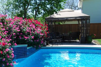 Pool and gazebo are available for guests.