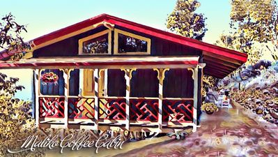 Photo for Ocean View Cabin located on Organic Coffee Farm with Hiking Trails