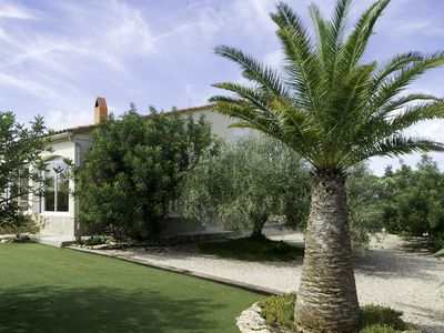 Photo for Beautiful quiet country house surrounded by olive trees