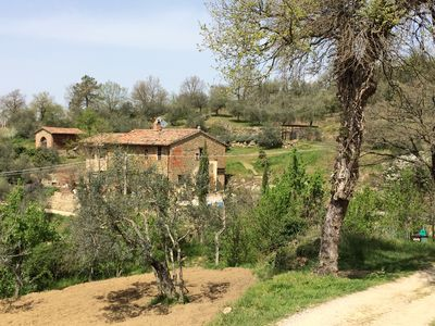 Photo for CASA LORENZO ~ WHOLE FARMHOUSE with stunning large Roman pool set in olive grove