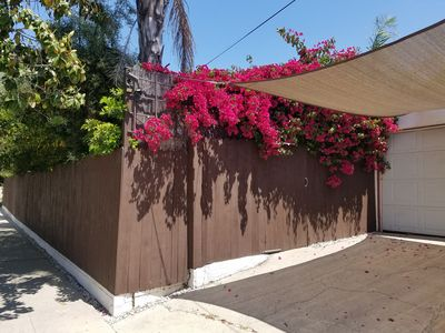 Photo for Your Cozy Little Home in Los Feliz/Silver lake!