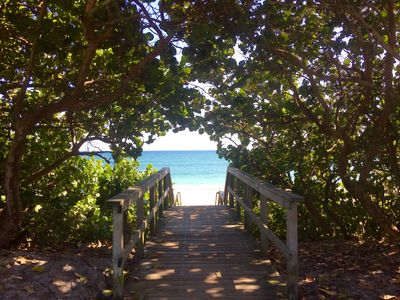 Photo for Prime Location, Hidden Gem, Steps to the Beach, Boutique Beachside Bungalow 7