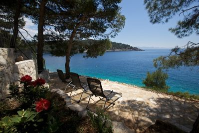 Relax by the sea in the shade of pine trees