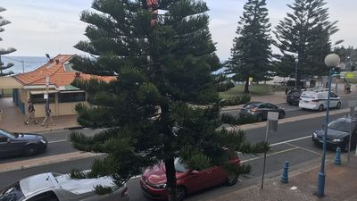 Photo for Coogee Beachfront 4 AAA