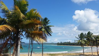 Photo for Beachfront Two Bedrooms Apartment In Playa Azul, Just Steps Away From The Beach