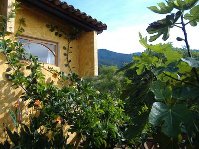 Photo for Tranquility, light and beautiful views - Oaxaca!