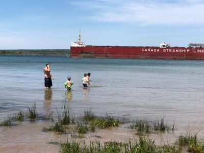 Freighters in front yard!  Private Sandy Beach - Large Deck - Best View on River