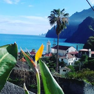 Photo for Vivenda Linda Vista 1   Beautiful Sea and Mountain Views in Porto da Cruz
