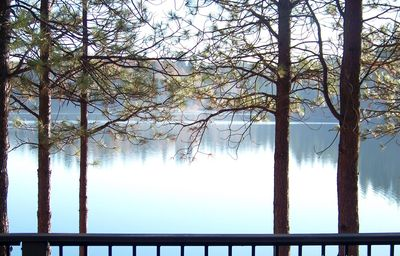 Mist often rises in the early morning as seen from the front deck