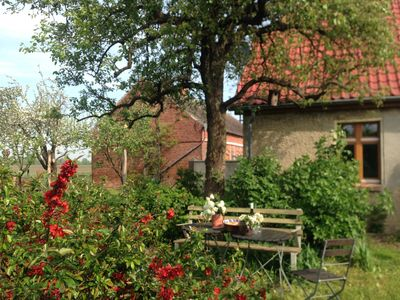 Photo for Holiday on the Hollerhof in Oderbruch