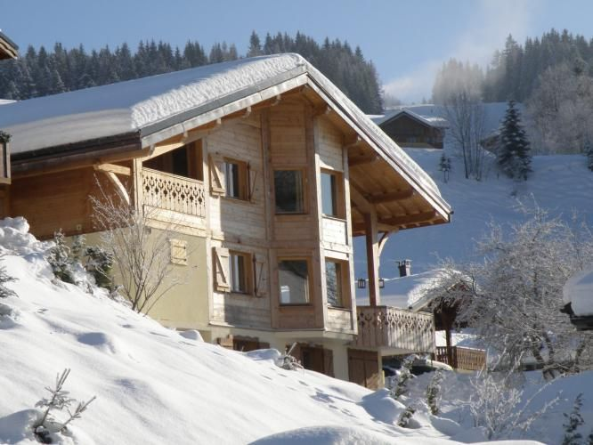 Apt Tehui in Chalet Moleson Charming Apartment in Traditional