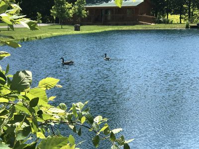 Private Catch & Release Lake - Boat Rental Included! Close To Lake Cumberland!